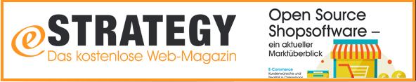 estrategy-magazin_de_ausgabe-01-2014